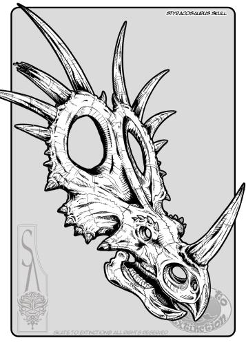 Styrocasaurus_Skull