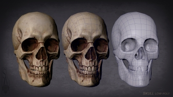 Skull low-poly